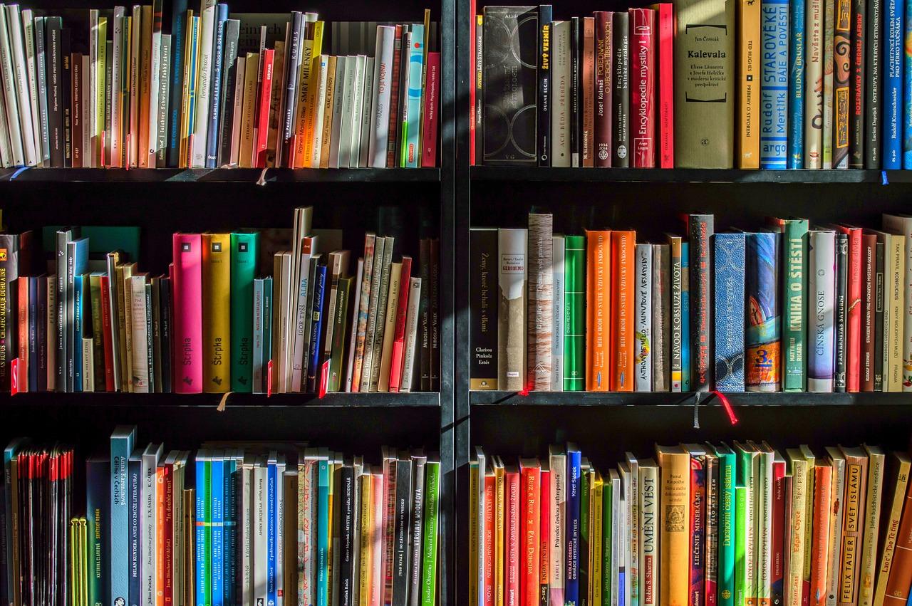 5 լավագույն գրքերը, որոնք պետք է կարդալ ստարտափ ստեղծելիս․ խորհուրդ հիմնադիրներից