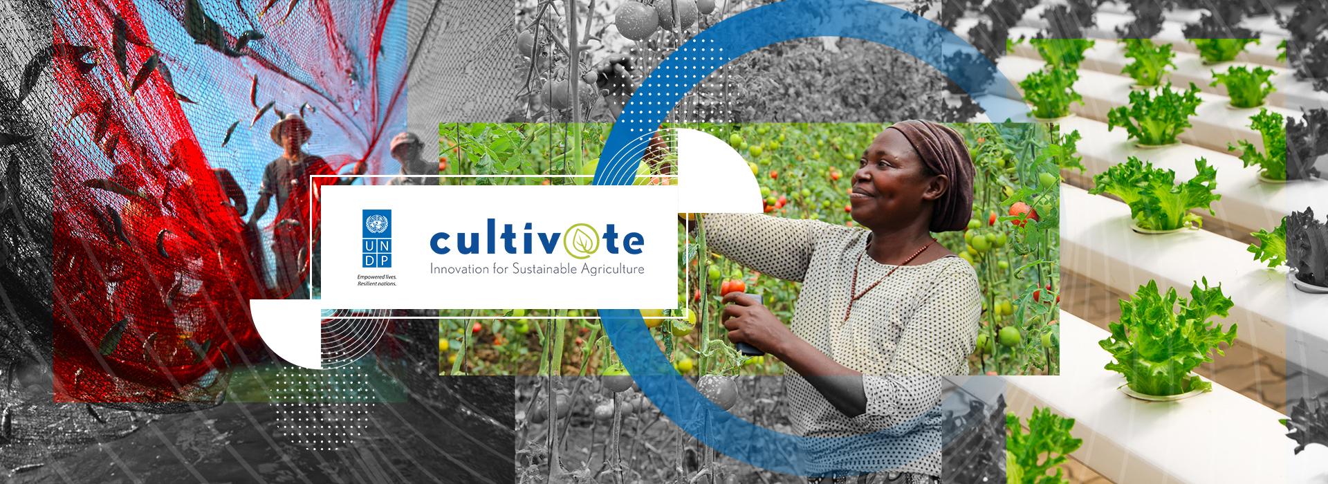 Միջազգային ագրոտեխնոլոգիական ստարտափների Cultiv@te ծրագիրը ընդունում է հայտեր