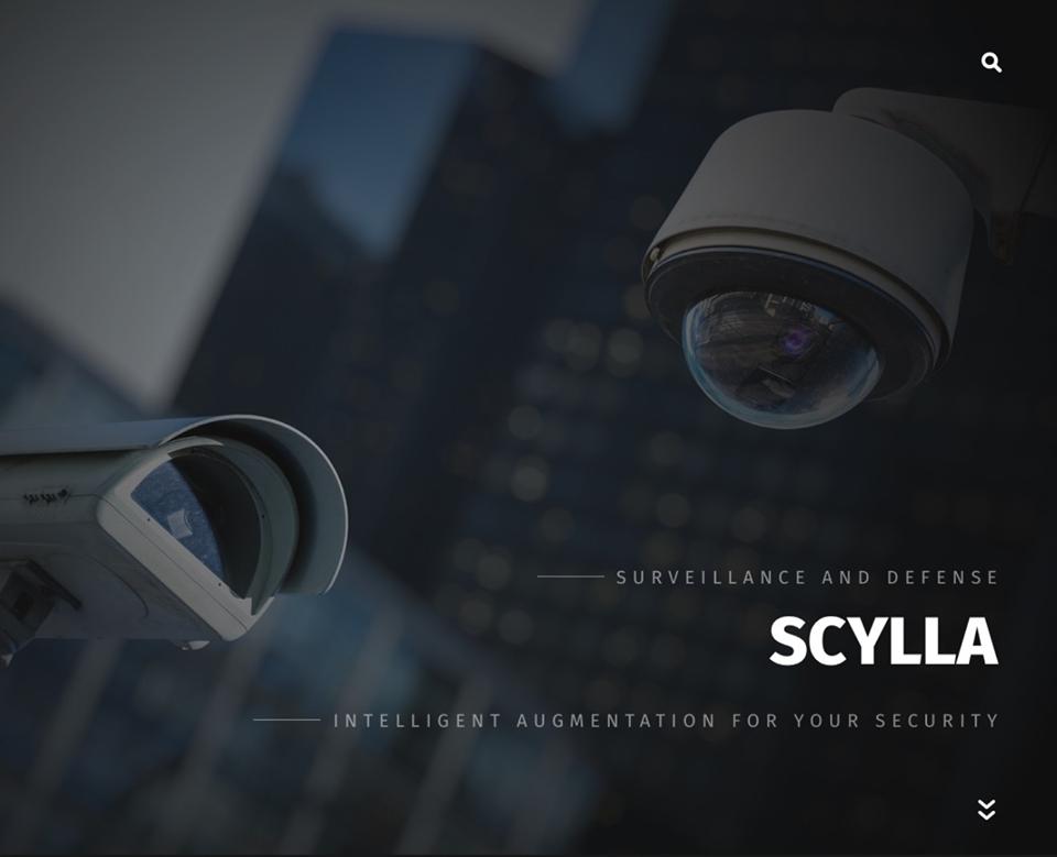 Scylla ստարտափ․ համակարգ, որը կօգնի կանխարգելել  հանցագործությունները