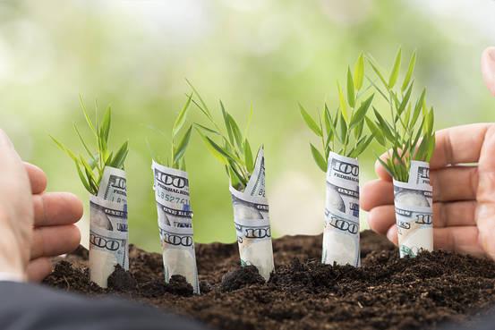 Փոլ Գրեմ. ստարտափի աճը միշտ չէ, որ արտաքին ֆինանսավորմամբ է պայմանավորված